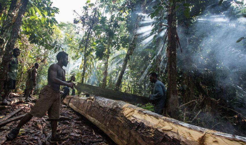 Daniel Rüdiger - Leben in Papua-Neuguinea. einfach schwer_04