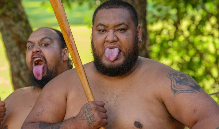 Heiko Beyer – Neuseeland. Ein halbes Jahr durchs Land der Kiwis_06